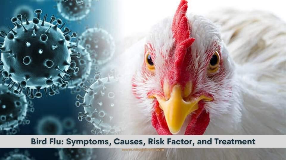 Bird Flu death spreads panic but human transmission rare